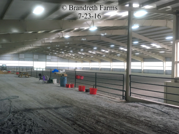 brandreth-farms-7-23-16-1