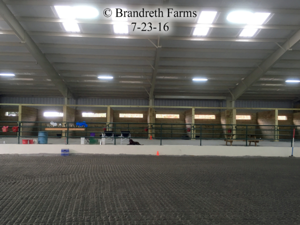 brandreth-farms-7-23-16-4