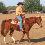 The Kansas Kowboy D