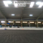 Brandreth Farms Arena