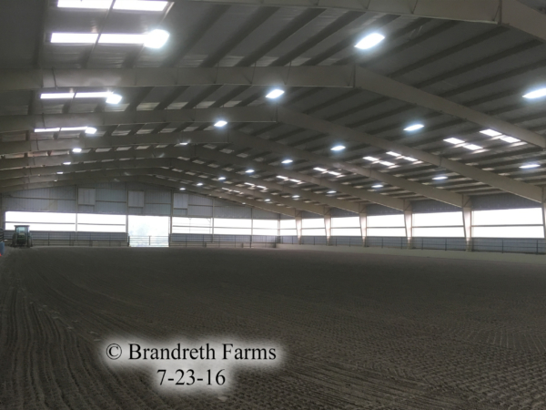 brandreth-farms-7-23-16-5
