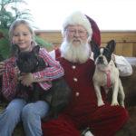 Santa, Izzy and Pups