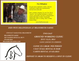 Ground Working Clinic