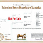 Certificate of Registrations