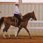 The Kansas Kowboy D.